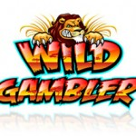 Wild Gambler Slot Review